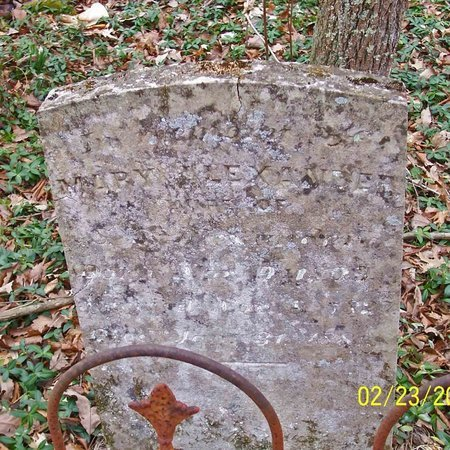 ALEXANDER, MARY - Lincoln County, Tennessee | MARY ALEXANDER - Tennessee Gravestone Photos