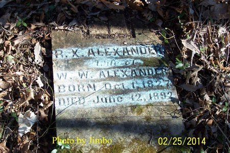 RANDOLPH ALEXANDER, RILLA XALINE - Lincoln County, Tennessee | RILLA XALINE RANDOLPH ALEXANDER - Tennessee Gravestone Photos