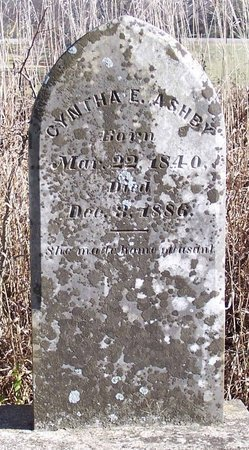 ASHBY, CYNTHA ELLEN - Lincoln County, Tennessee | CYNTHA ELLEN ASHBY - Tennessee Gravestone Photos