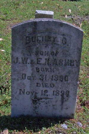 ASHBY, BURNEY G. - Lincoln County, Tennessee | BURNEY G. ASHBY - Tennessee Gravestone Photos