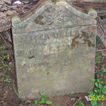 ASHBY, ELIZA DALLAS - Lincoln County, Tennessee | ELIZA DALLAS ASHBY - Tennessee Gravestone Photos