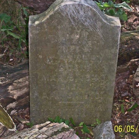 WADLEY ASHBY, ELLEN E. - Lincoln County, Tennessee | ELLEN E. WADLEY ASHBY - Tennessee Gravestone Photos