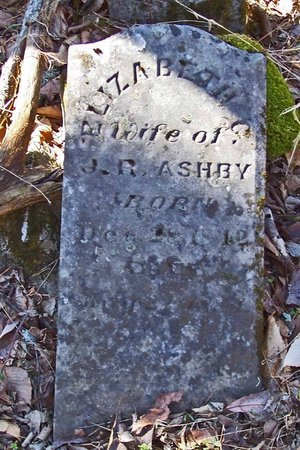 ASHBY, ELIZABETH CATHERINE - Lincoln County, Tennessee | ELIZABETH CATHERINE ASHBY - Tennessee Gravestone Photos