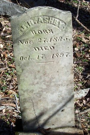 ASHBY, J. R. - Lincoln County, Tennessee | J. R. ASHBY - Tennessee Gravestone Photos