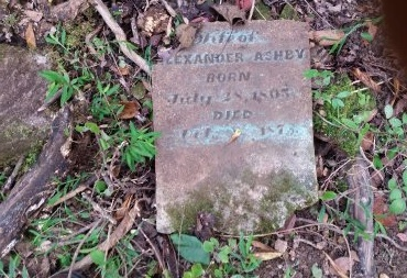 ASHBY, LAVINIA - Lincoln County, Tennessee | LAVINIA ASHBY - Tennessee Gravestone Photos