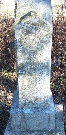 ASHBY, MARY JANE - Lincoln County, Tennessee | MARY JANE ASHBY - Tennessee Gravestone Photos