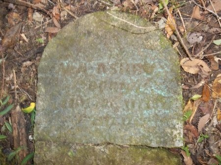 "ASHBY, NATHANIEL ALEXANDER ""NATHAN"" - Lincoln County, Tennessee | NATHANIEL ALEXANDER ""NATHAN"" ASHBY - Tennessee Gravestone Photos"