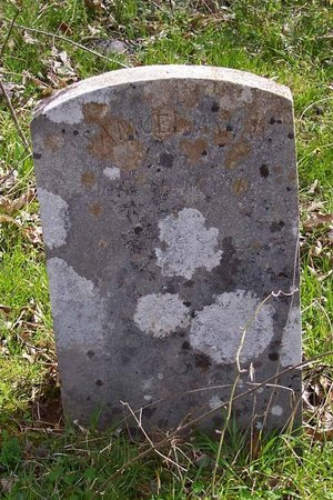ASHBY, SAMUEL - Lincoln County, Tennessee | SAMUEL ASHBY - Tennessee Gravestone Photos
