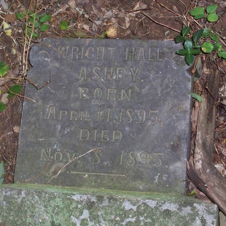 ASHBY, WRIGHT HALL - Lincoln County, Tennessee | WRIGHT HALL ASHBY - Tennessee Gravestone Photos