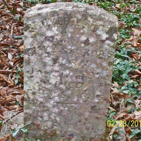 BOAZ, GROVER LARGIN - Lincoln County, Tennessee | GROVER LARGIN BOAZ - Tennessee Gravestone Photos