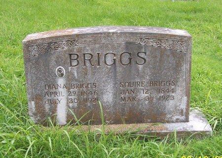 BRIGGS, SQUIRE BRIGGS - Lincoln County, Tennessee | SQUIRE BRIGGS BRIGGS - Tennessee Gravestone Photos