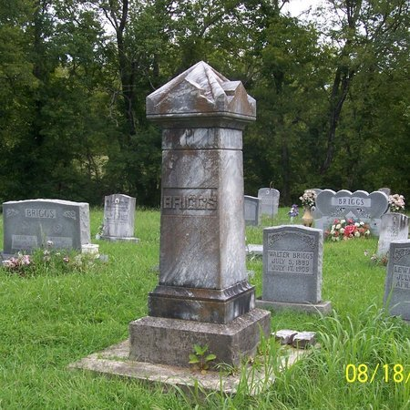 BRIGGS, FAMILY STONE - Lincoln County, Tennessee | FAMILY STONE BRIGGS - Tennessee Gravestone Photos