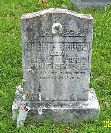 BRIGGS, JOHN P. - Lincoln County, Tennessee | JOHN P. BRIGGS - Tennessee Gravestone Photos
