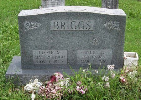 BRIGGS, LIZZIE M. - Lincoln County, Tennessee | LIZZIE M. BRIGGS - Tennessee Gravestone Photos