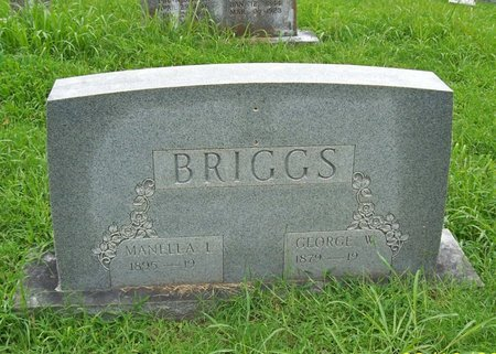 BRIGGS, GEORGE W. - Lincoln County, Tennessee | GEORGE W. BRIGGS - Tennessee Gravestone Photos