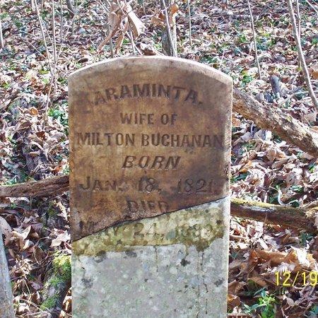 BUCHANAN, ARAMINTA A. - Lincoln County, Tennessee | ARAMINTA A. BUCHANAN - Tennessee Gravestone Photos