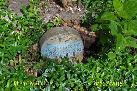BUCHANAN, ANDREW - Lincoln County, Tennessee | ANDREW BUCHANAN - Tennessee Gravestone Photos