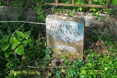 BUCHANAN, BETHIAH LYNE - Lincoln County, Tennessee | BETHIAH LYNE BUCHANAN - Tennessee Gravestone Photos