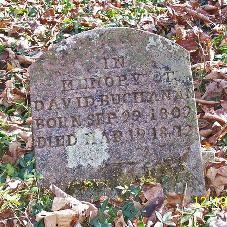 BUCHANAN, DAVID - Lincoln County, Tennessee | DAVID BUCHANAN - Tennessee Gravestone Photos