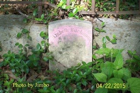BUCHANAN, ELIZABETH - Lincoln County, Tennessee | ELIZABETH BUCHANAN - Tennessee Gravestone Photos