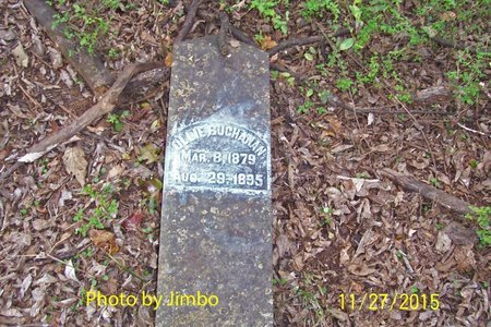 BUCHANAN, OLLIE - Lincoln County, Tennessee | OLLIE BUCHANAN - Tennessee Gravestone Photos