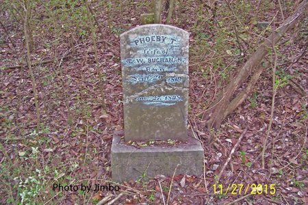 BUCHANAN, PHOEBY T. - Lincoln County, Tennessee | PHOEBY T. BUCHANAN - Tennessee Gravestone Photos