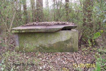 BUCHANAN, MARY - Lincoln County, Tennessee | MARY BUCHANAN - Tennessee Gravestone Photos
