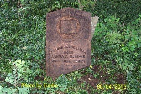 BUCHANAN, THADUS SYLVESTER - Lincoln County, Tennessee | THADUS SYLVESTER BUCHANAN - Tennessee Gravestone Photos