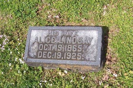 LINDSAY CARPENTER, ALICE - Lincoln County, Tennessee | ALICE LINDSAY CARPENTER - Tennessee Gravestone Photos