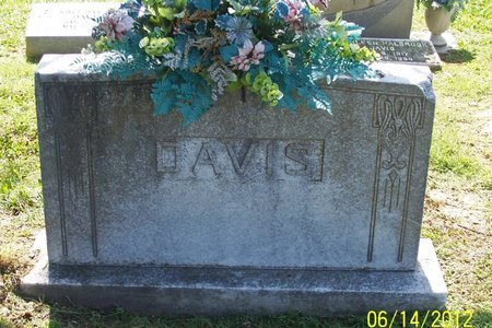 DAVIS, FAMILY STONE - Lincoln County, Tennessee | FAMILY STONE DAVIS - Tennessee Gravestone Photos