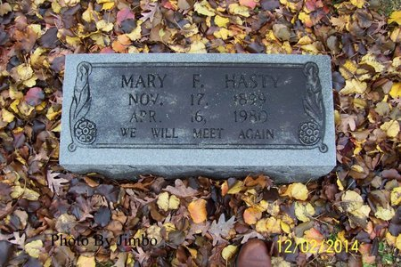 HASTY, MARY F - Lincoln County, Tennessee | MARY F HASTY - Tennessee Gravestone Photos