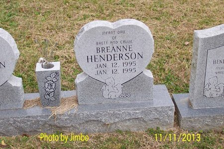 HENDERSON, BREANNE - Lincoln County, Tennessee | BREANNE HENDERSON - Tennessee Gravestone Photos