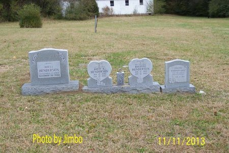 HENDERSON, FAMILY VIEW - Lincoln County, Tennessee | FAMILY VIEW HENDERSON - Tennessee Gravestone Photos