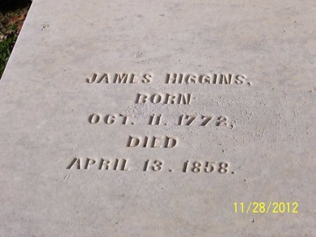 HIGGINS, JAMES - Lincoln County, Tennessee | JAMES HIGGINS - Tennessee Gravestone Photos