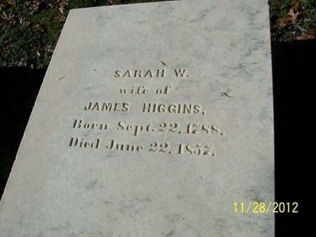 MOORES HIGGINS, SARAH W. - Lincoln County, Tennessee | SARAH W. MOORES HIGGINS - Tennessee Gravestone Photos