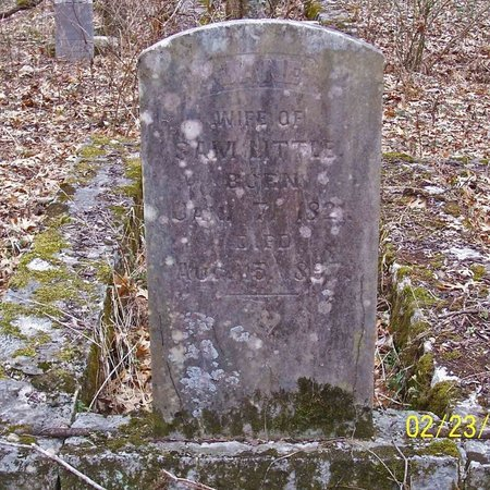 LITTLE, JANE - Lincoln County, Tennessee | JANE LITTLE - Tennessee Gravestone Photos