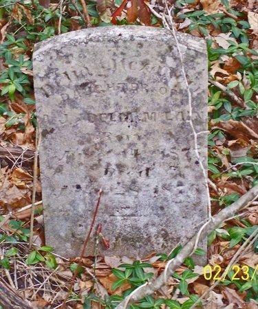 MCCLAIN, DELIA ALEXANDER - Lincoln County, Tennessee | DELIA ALEXANDER MCCLAIN - Tennessee Gravestone Photos