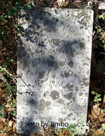 MOORE, MARY FINETTA - Lincoln County, Tennessee   MARY FINETTA MOORE - Tennessee Gravestone Photos