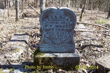 MOORE, TERA - Lincoln County, Tennessee | TERA MOORE - Tennessee Gravestone Photos