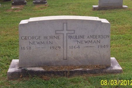 NEWMAN, GEORGE HORNE - Lincoln County, Tennessee | GEORGE HORNE NEWMAN - Tennessee Gravestone Photos