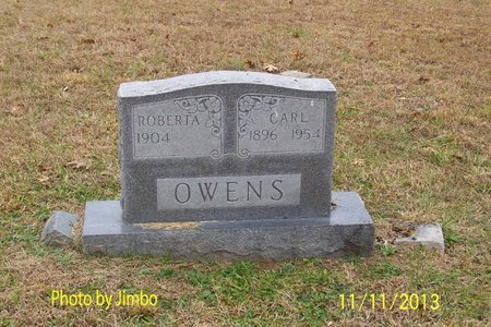 OWENS, ROBERTA - Lincoln County, Tennessee | ROBERTA OWENS - Tennessee Gravestone Photos