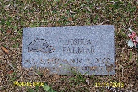 PALMER, JOSHUA - Lincoln County, Tennessee | JOSHUA PALMER - Tennessee Gravestone Photos