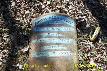TATE, SMITH ALEXANDER - Lincoln County, Tennessee | SMITH ALEXANDER TATE - Tennessee Gravestone Photos