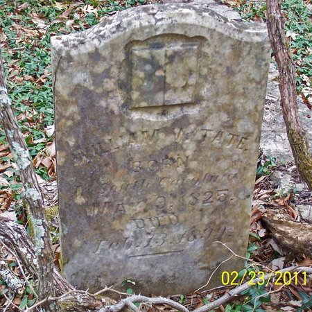 TATE, WILLIAM V. - Lincoln County, Tennessee | WILLIAM V. TATE - Tennessee Gravestone Photos