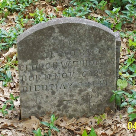 THOMAS, GEORGE W. - Lincoln County, Tennessee | GEORGE W. THOMAS - Tennessee Gravestone Photos