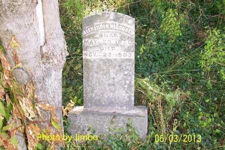 WAGGONER, ALEXANDER - Lincoln County, Tennessee | ALEXANDER WAGGONER - Tennessee Gravestone Photos