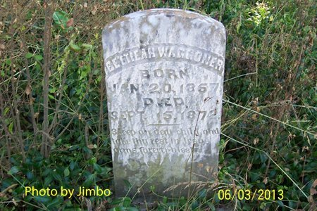 WAGGONER, BETTIEAN - Lincoln County, Tennessee | BETTIEAN WAGGONER - Tennessee Gravestone Photos
