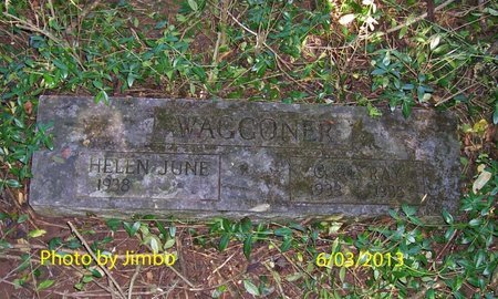 WAGGONER, CARL RAY - Lincoln County, Tennessee | CARL RAY WAGGONER - Tennessee Gravestone Photos