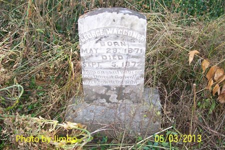 WAGGONER, GEORGE - Lincoln County, Tennessee | GEORGE WAGGONER - Tennessee Gravestone Photos