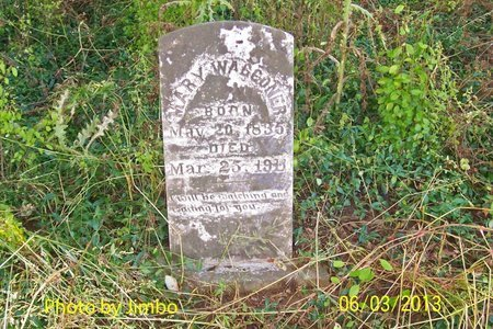 MCGEE WAGGONER, MARY - Lincoln County, Tennessee | MARY MCGEE WAGGONER - Tennessee Gravestone Photos